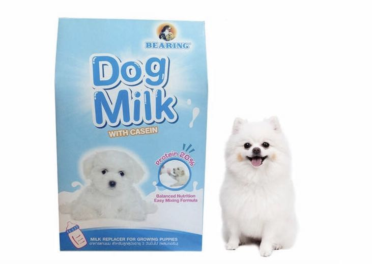 Bearing Dog Milk With Casein 300ml For Dogs